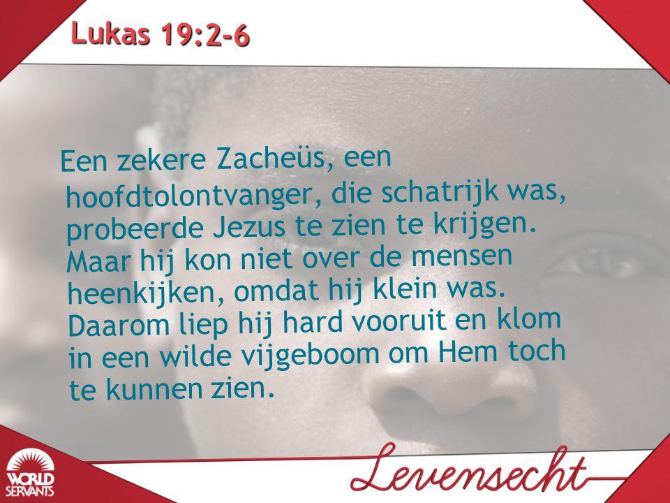 Lukas 19:2-6 Een zekere Zacheüs, een hoofdtolontvanger, die schatrijk was, probeerde Jezus te zien te krijgen.