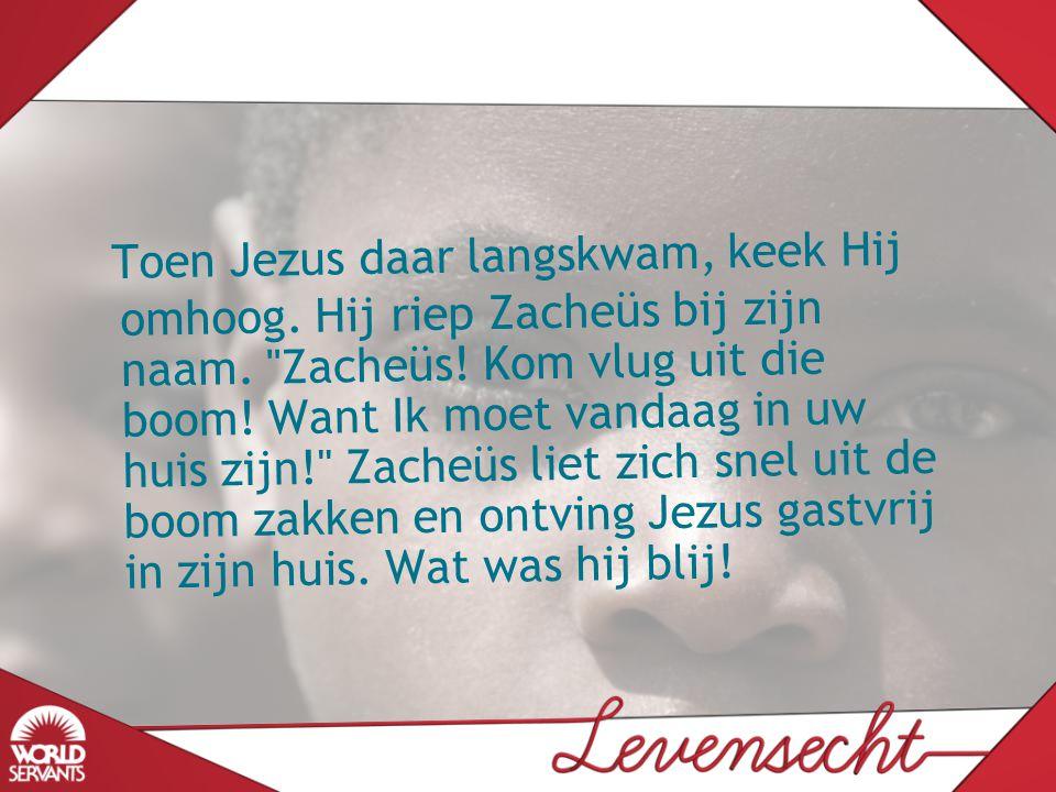 Toen Jezus daar langskwam, keek Hij omhoog. Hij riep Zacheüs bij zijn naam.