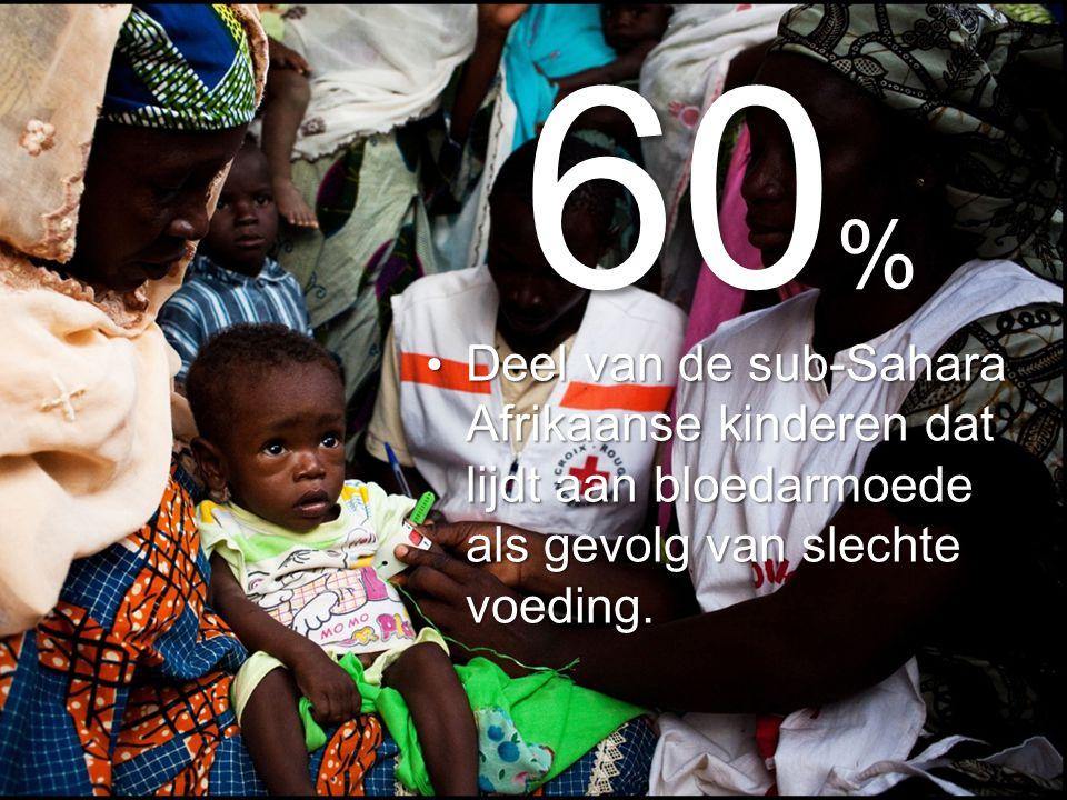 60 % Deel van de sub-Sahara Afrikaanse kinderen dat lijdt aan bloedarmoede als gevolg van slechte voeding.
