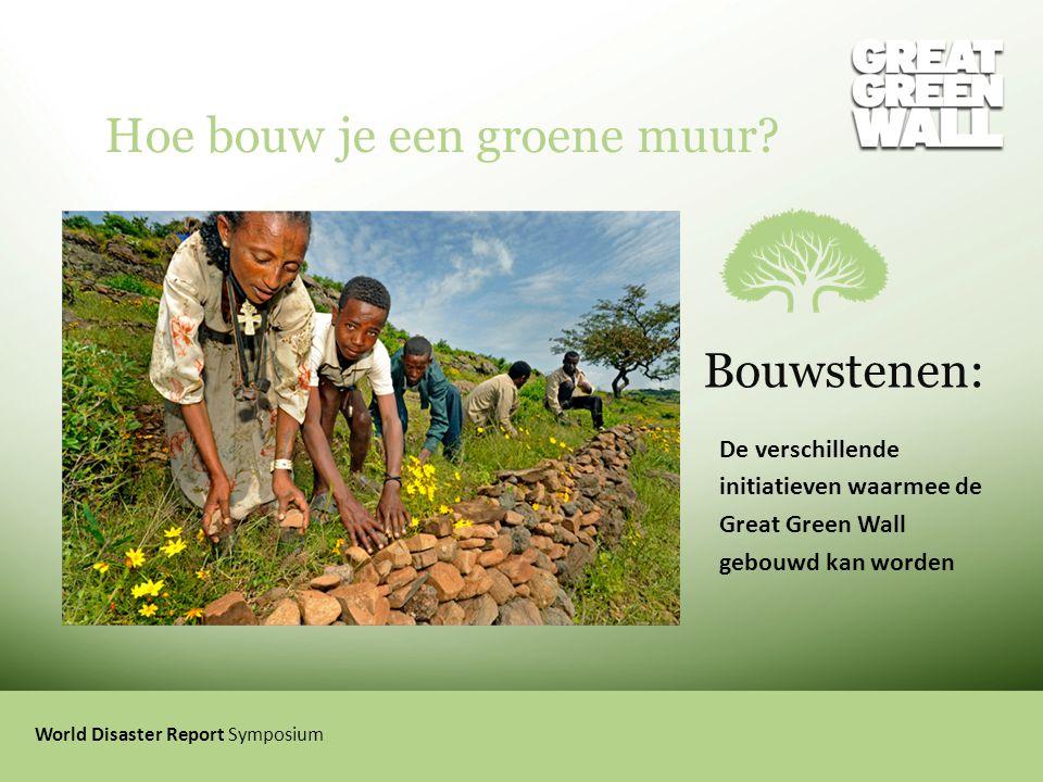 Hoe bouw je een groene muur? World Disaster Report Symposium Bouwstenen: De verschillende initiatieven waarmee de Great Green Wall gebouwd kan worden