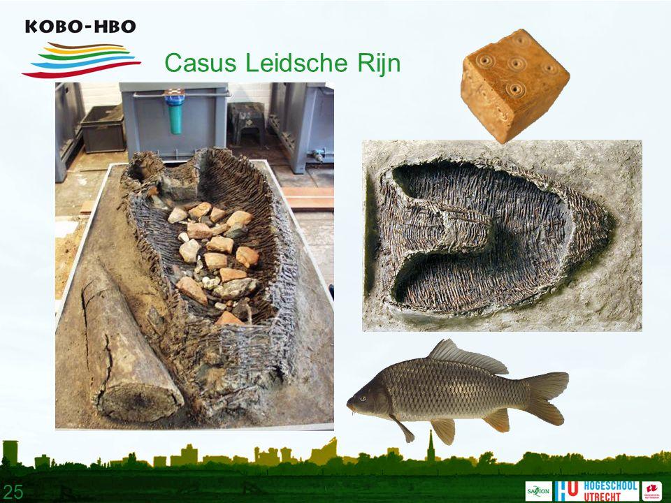 25 Casus Leidsche Rijn