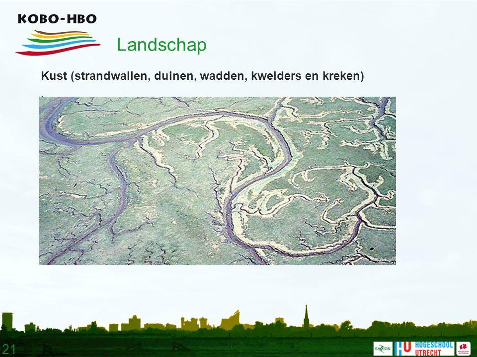 21 Landschap Kust (strandwallen, duinen, wadden, kwelders en kreken).