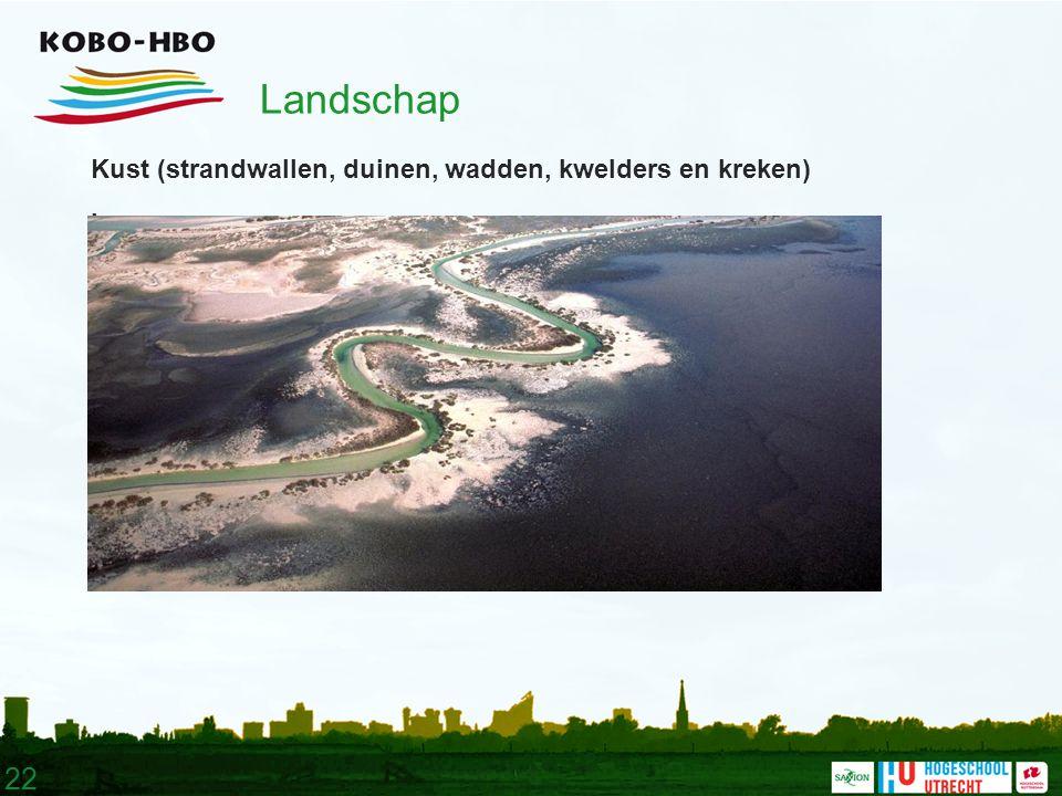 22 Landschap Kust (strandwallen, duinen, wadden, kwelders en kreken).