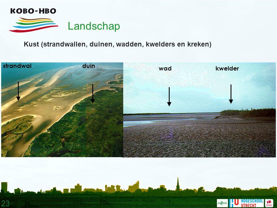 23 Landschap Kust (strandwallen, duinen, wadden, kwelders en kreken) wadkwelder duinstrandwal