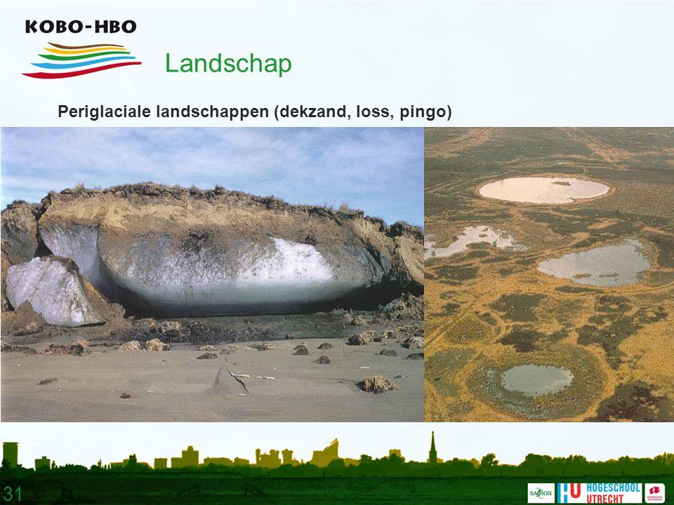 31 Landschap Periglaciale landschappen (dekzand, loss, pingo)
