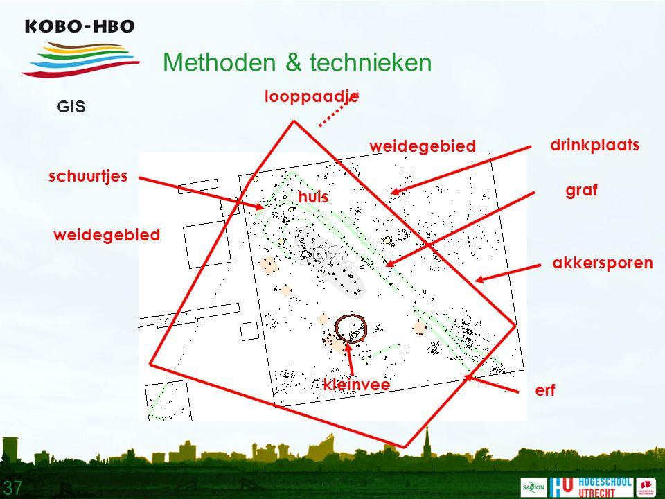 37 Methoden & technieken GIS huis erf kleinvee weidegebied akkersporen looppaadje drinkplaats schuurtjes graf