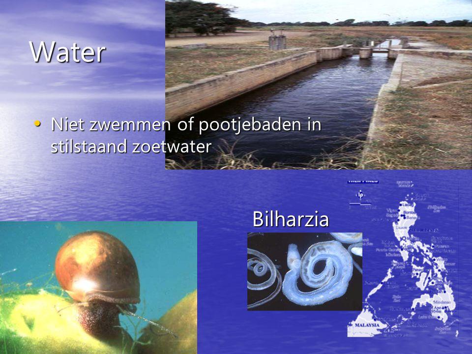 Water Niet zwemmen of pootjebaden in stilstaand zoetwater Niet zwemmen of pootjebaden in stilstaand zoetwater Bilharzia
