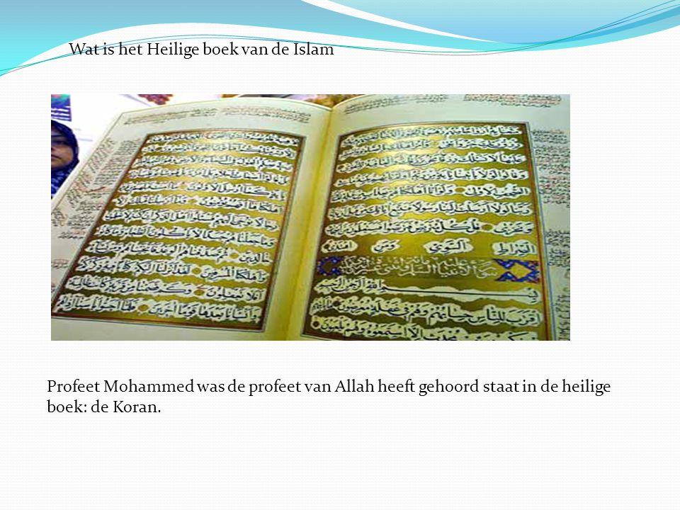 Wat is het Heilige boek van de Islam Profeet Mohammed was de profeet van Allah heeft gehoord staat in de heilige boek: de Koran.