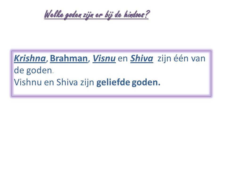 Welke goden zijn er bij de hindoes? Krishna, Brahman, Visnu en Shiva zijn één van de goden. Vishnu en Shiva zijn geliefde goden.