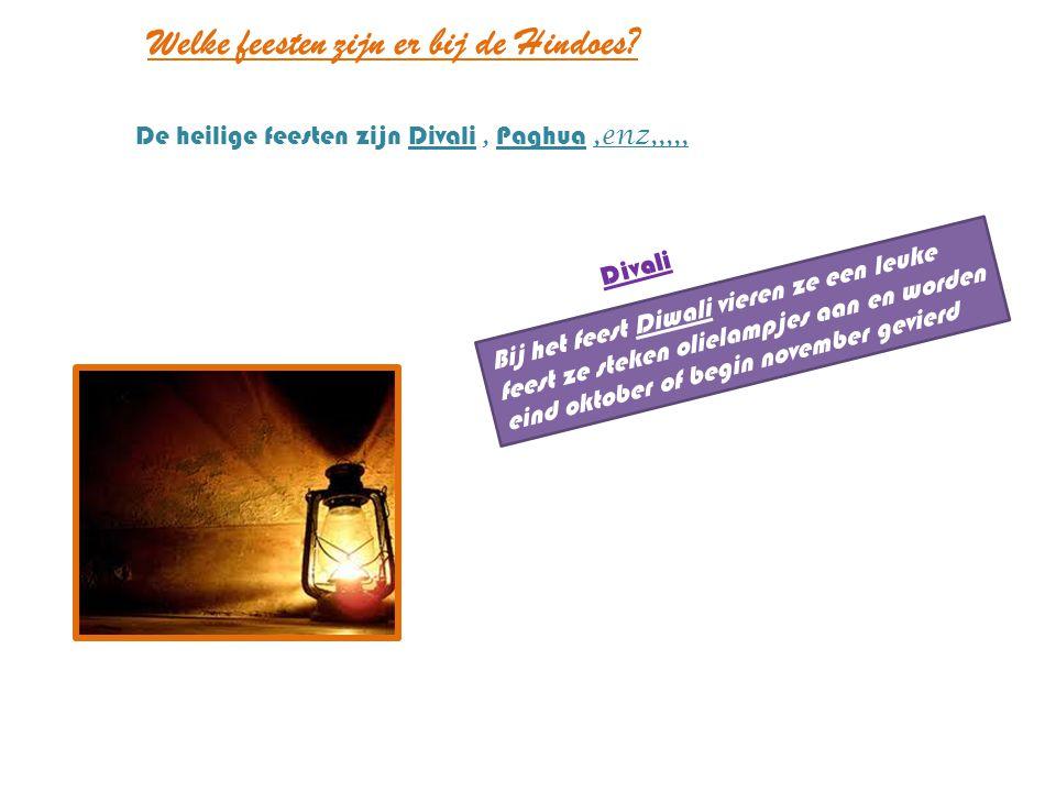 Welke feesten zijn er bij de Hindoes? Bij het feest Diwali vieren ze een leuke feest ze steken olielampjes aan en worden eind oktober of begin novembe
