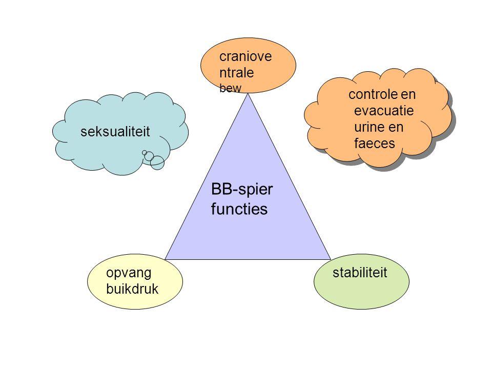 BB-spier functies opvang buikdruk craniove ntrale bew stabiliteit controle en evacuatie urine en faeces seksualiteit