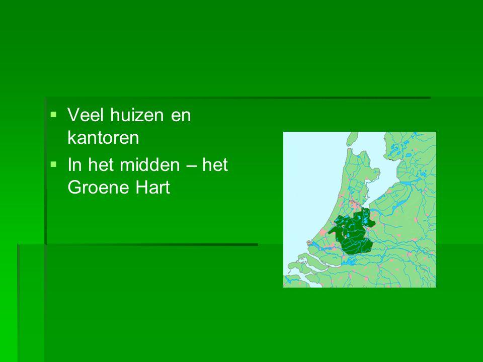   Veel huizen en kantoren   In het midden – het Groene Hart
