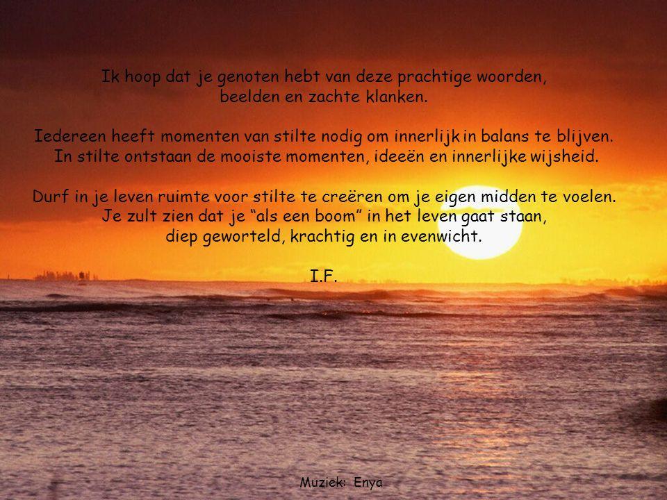Sahara Het wezen en de diepte van vriendschap tussen mens en God, jezelf, de ander en het leven weerspiegelt zich in de kwaliteit van de stilte in jezelf en de beschutting die zij biedt.
