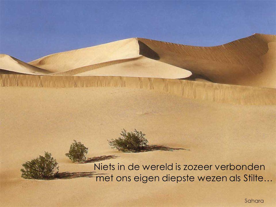 Niets in de wereld is zozeer verbonden met ons eigen diepste wezen als Stilte… Sahara