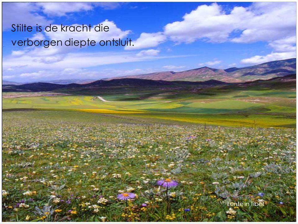 Stilte is de kracht die verborgen diepte ontsluit. Lente in Tibet