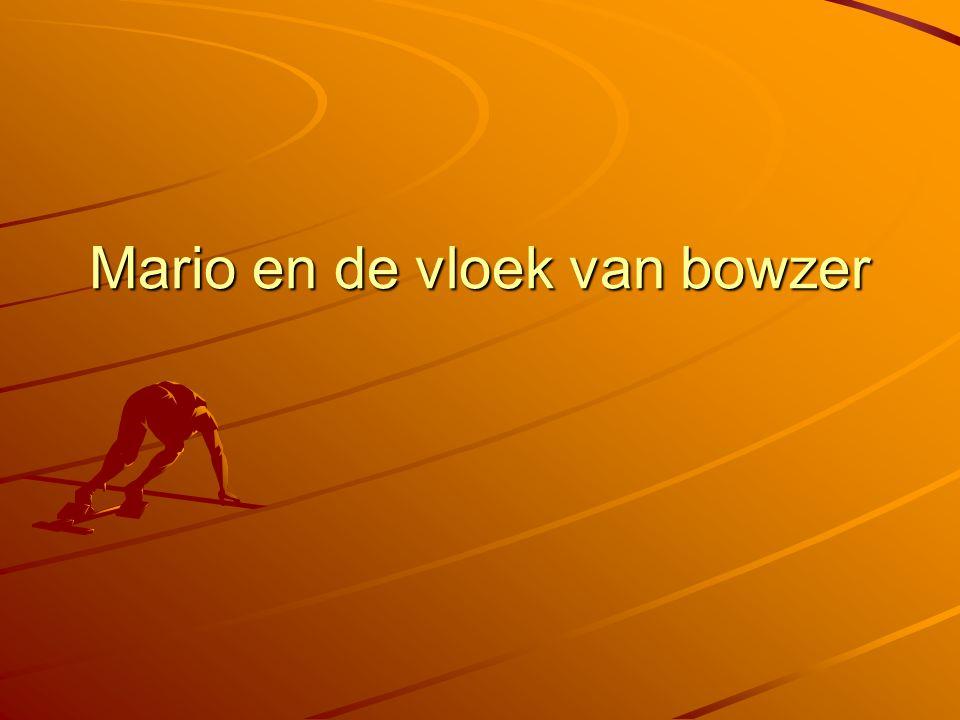 Mario en de vloek van bowzer