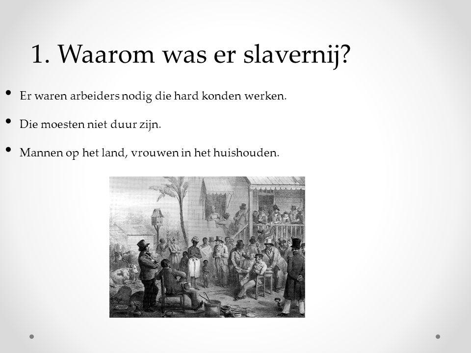 1.Waarom was er slavernij. Er waren arbeiders nodig die hard konden werken.