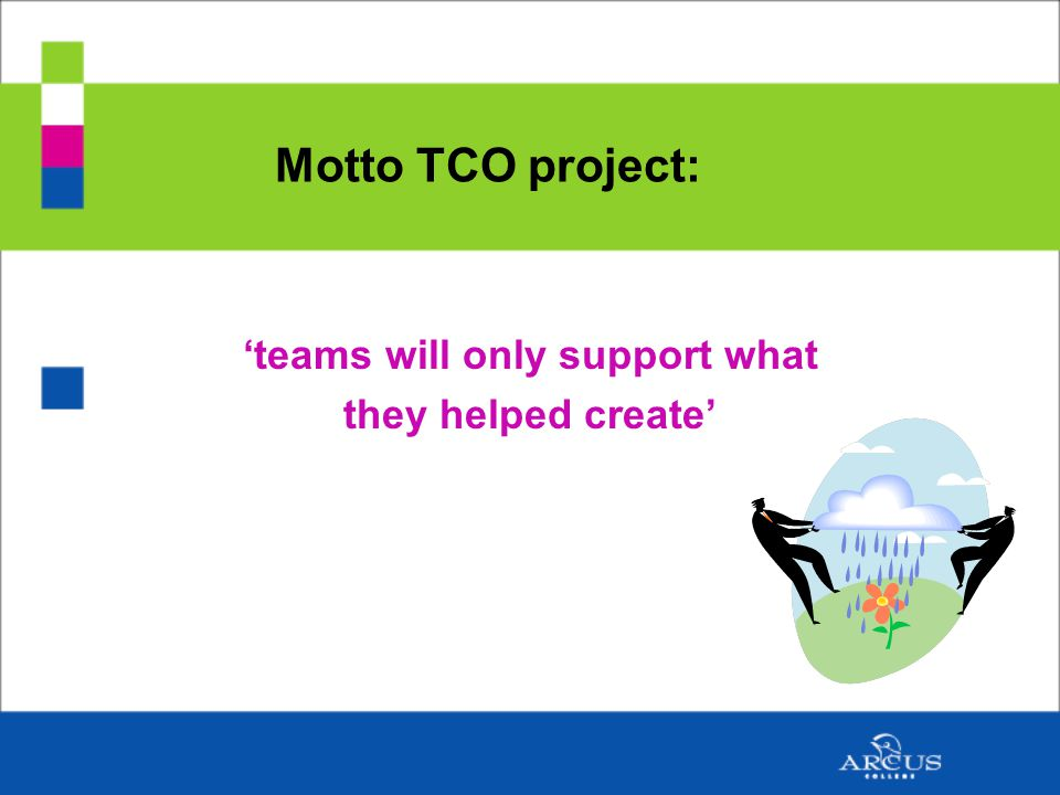 Motto TCO project: 'teams will only support what they helped create'