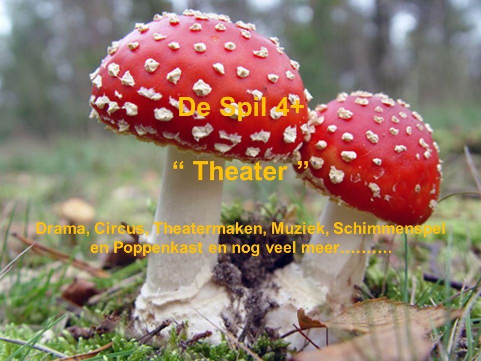 De Spil 4+ Theater Drama, Circus, Theatermaken, Muziek, Schimmenspel en Poppenkast en nog veel meer……….