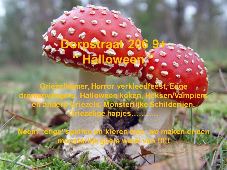 Dorpstraat 206 9+ Halloween Griezelkamer, Horror verkleedfeest, Enge dromenvangers, Halloween koken, Heksen/Vampiers en andere Griezels, Monsterlijke Schilderijen, Griezelige hapjes………..