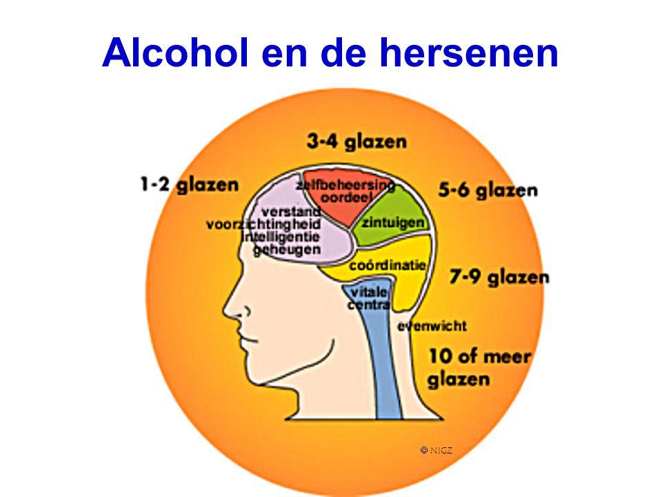 Alcohol en de hersenen  NIGZ