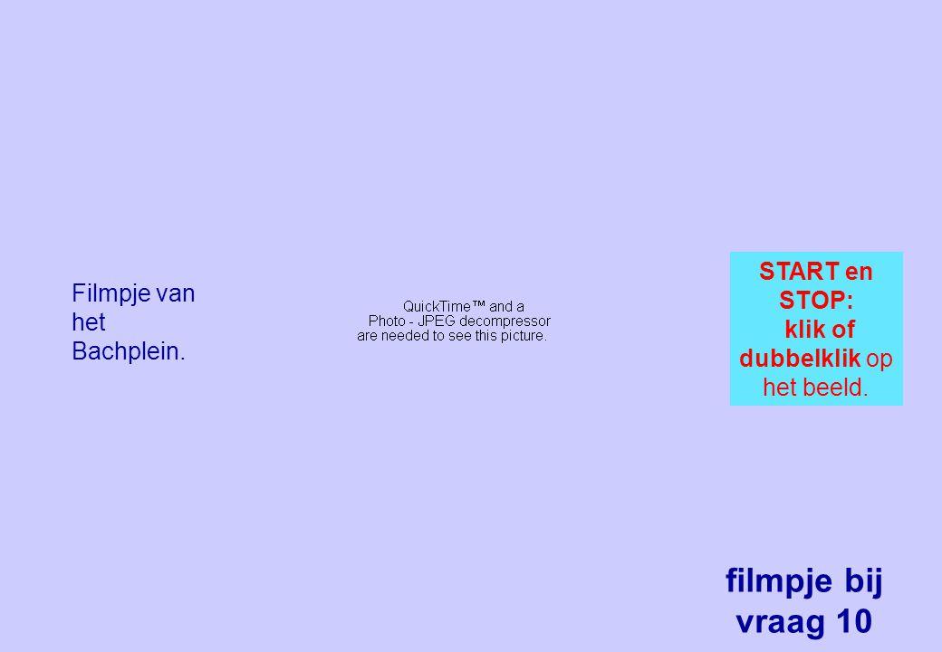 Filmpje van het Bachplein. START en STOP: klik of dubbelklik op het beeld. filmpje bij vraag 10