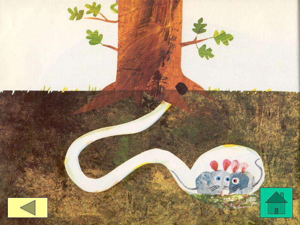voor de lange lange slang!