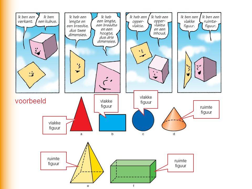 voorbeeld vlakke figuur ruimte figuur