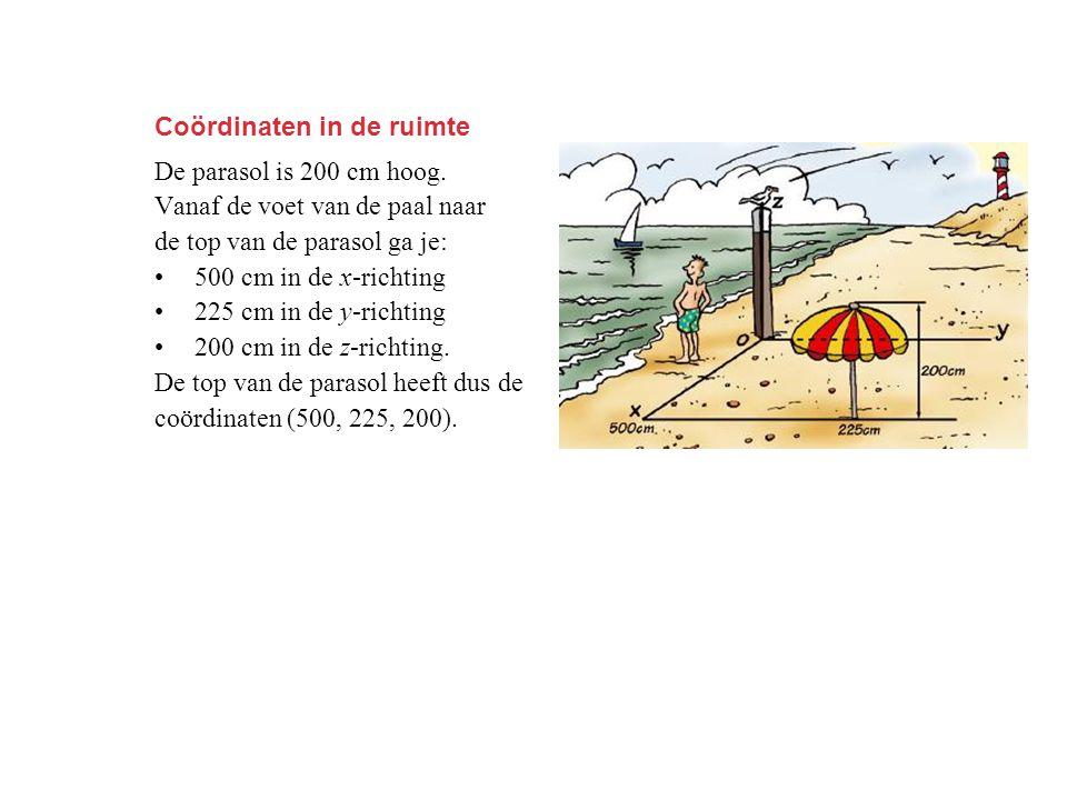 Coördinaten in de ruimte De parasol is 200 cm hoog. Vanaf de voet van de paal naar de top van de parasol ga je: 500 cm in de x-richting 225 cm in de y