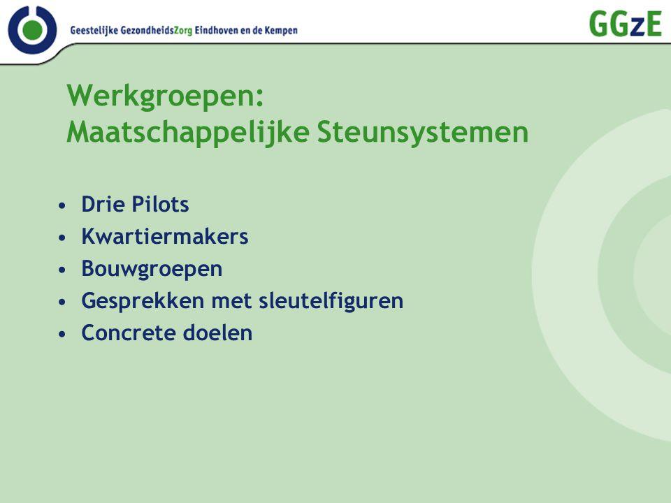 Werkgroepen: Maatschappelijke Steunsystemen Drie Pilots Kwartiermakers Bouwgroepen Gesprekken met sleutelfiguren Concrete doelen