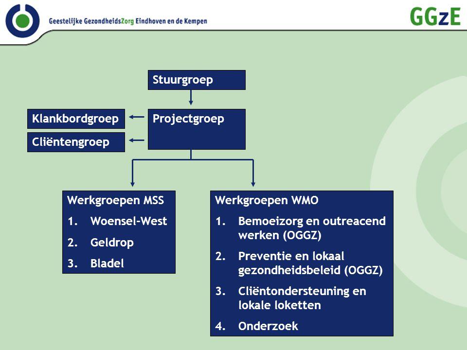 Stuurgroep ProjectgroepKlankbordgroep Cliëntengroep Werkgroepen WMO 1.Bemoeizorg en outreacend werken (OGGZ) 2.Preventie en lokaal gezondheidsbeleid (OGGZ) 3.Cliëntondersteuning en lokale loketten 4.Onderzoek Werkgroepen MSS 1.Woensel-West 2.Geldrop 3.Bladel