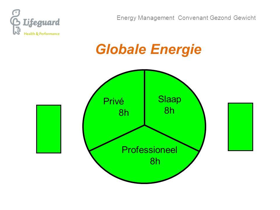 Energy Management Convenant Gezond Gewicht Globale Energie Slaap 8h Privé 8h Professioneel 8h