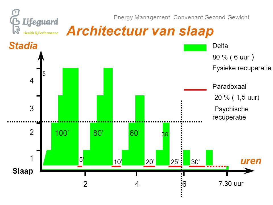 Energy Management Convenant Gezond Gewicht 5 Architectuur van slaap 4 7.30 uur 62 uren 2 1 4 3 Stadia 100'80'60' 80 % ( 6 uur ) 20 % ( 1,5 uur) Slaap