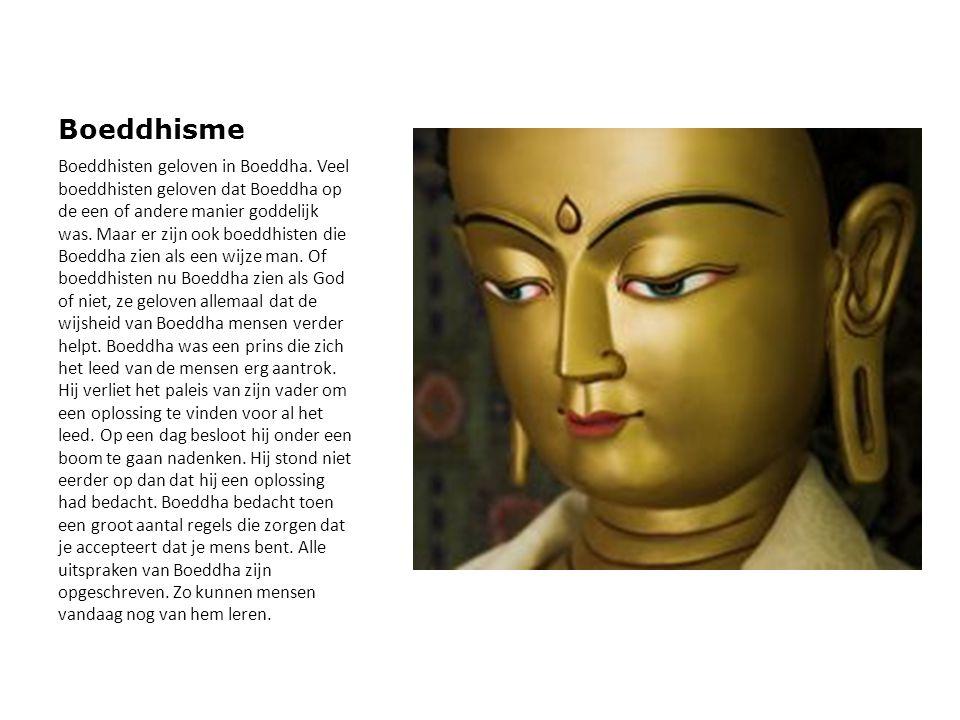 Boeddhisme Boeddhisten geloven in Boeddha. Veel boeddhisten geloven dat Boeddha op de een of andere manier goddelijk was. Maar er zijn ook boeddhisten