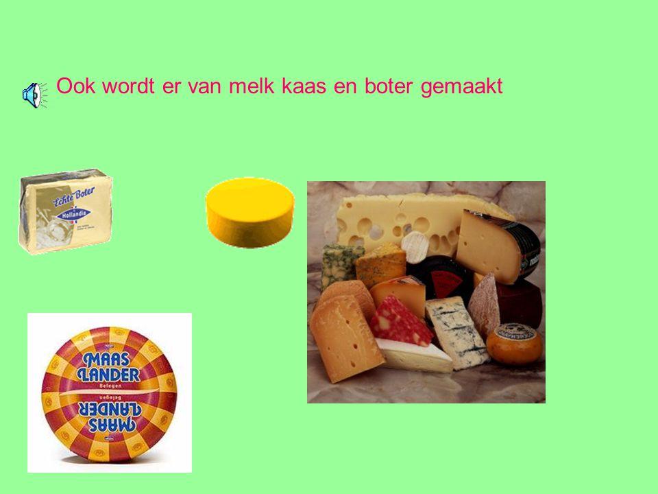 Ook wordt er van melk kaas en boter gemaakt