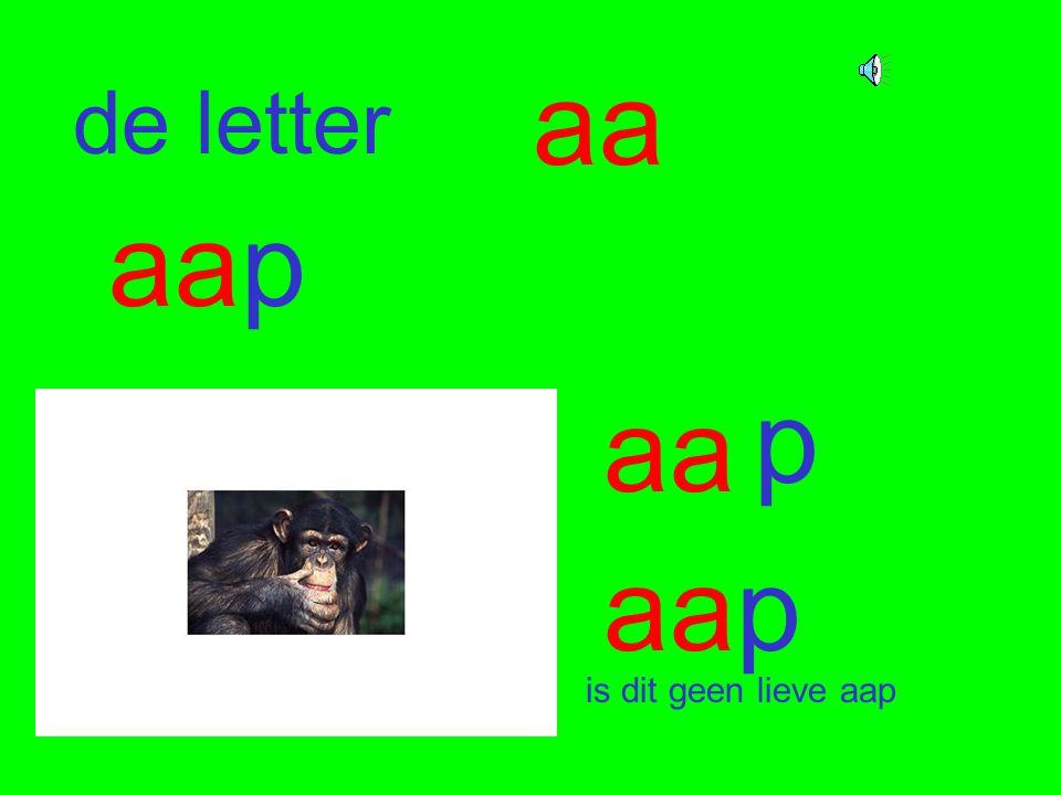 de letter aa aap aa p is dit geen lieve aap