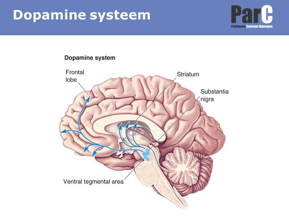 20-50% van de PD patiënten Meer dan bij normale populatie Kan aan PD voorafgaan Meer burn out (8% vs 4%) Aanpak –Uitleg –Begeleiding (psycholoog, coping strategie, cognitieve gedragstherapie) –Parkinson medicatie aanpassen –Antidepressiva –ECT Depressie