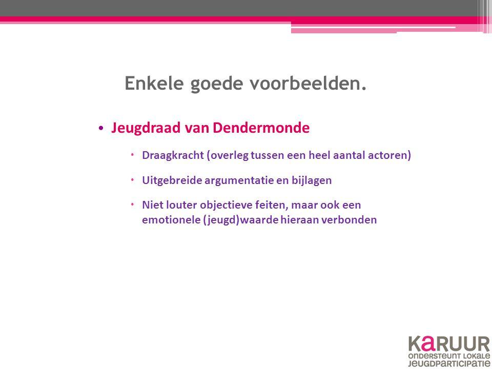 Enkele goede voorbeelden. Jeugdraad van Dendermonde  Draagkracht (overleg tussen een heel aantal actoren)  Uitgebreide argumentatie en bijlagen  Ni
