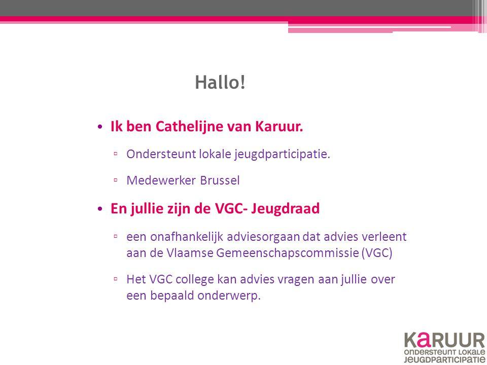 Hallo! Ik ben Cathelijne van Karuur. ▫ Ondersteunt lokale jeugdparticipatie. ▫ Medewerker Brussel En jullie zijn de VGC- Jeugdraad ▫ een onafhankelijk