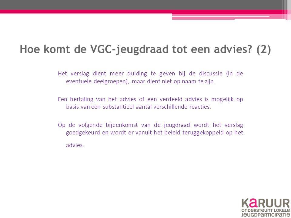 Hoe komt de VGC-jeugdraad tot een advies? (2) Het verslag dient meer duiding te geven bij de discussie (in de eventuele deelgroepen), maar dient niet