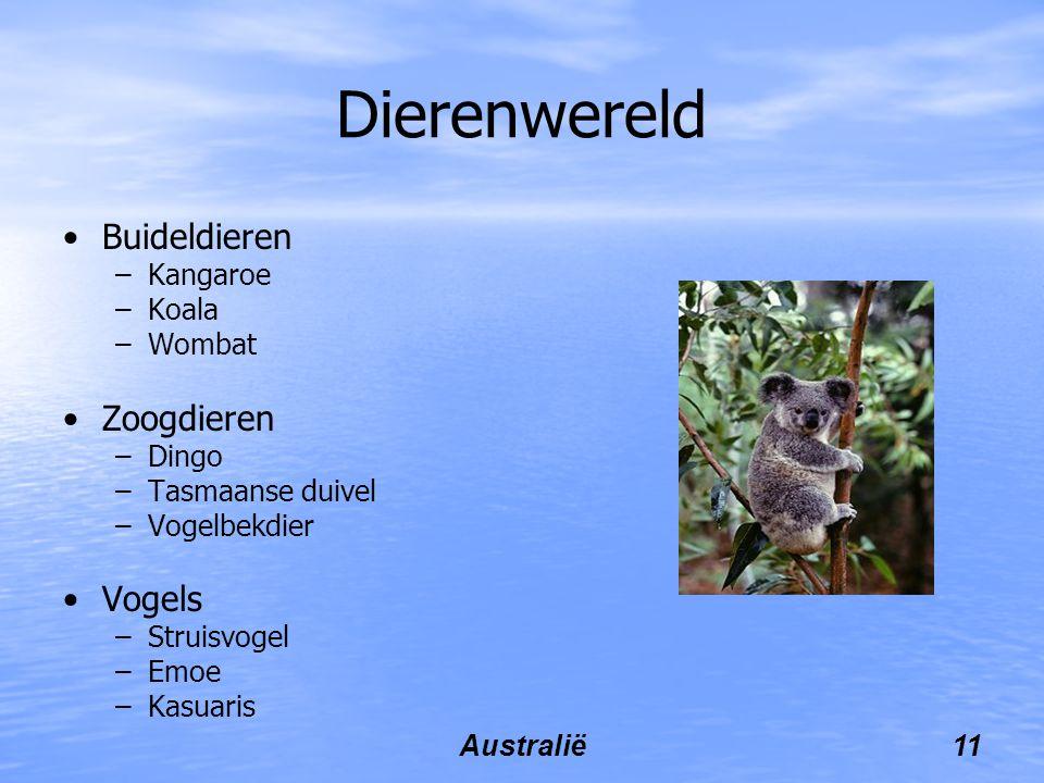 Australië11 Dierenwereld Buideldieren –Kangaroe –Koala –Wombat Zoogdieren –Dingo –Tasmaanse duivel –Vogelbekdier Vogels –Struisvogel –Emoe –Kasuaris