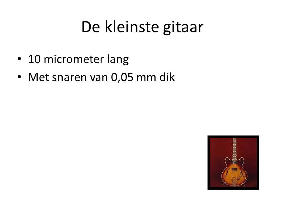 De kleinste gitaar 10 micrometer lang Met snaren van 0,05 mm dik