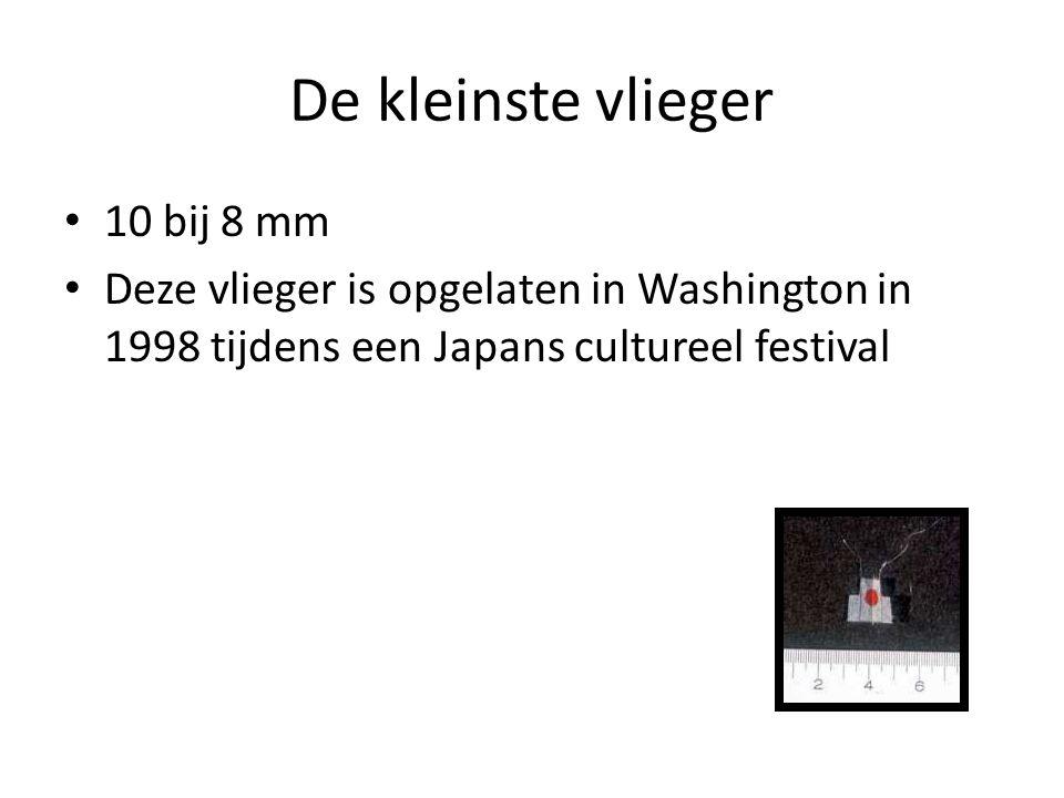 De kleinste vlieger 10 bij 8 mm Deze vlieger is opgelaten in Washington in 1998 tijdens een Japans cultureel festival
