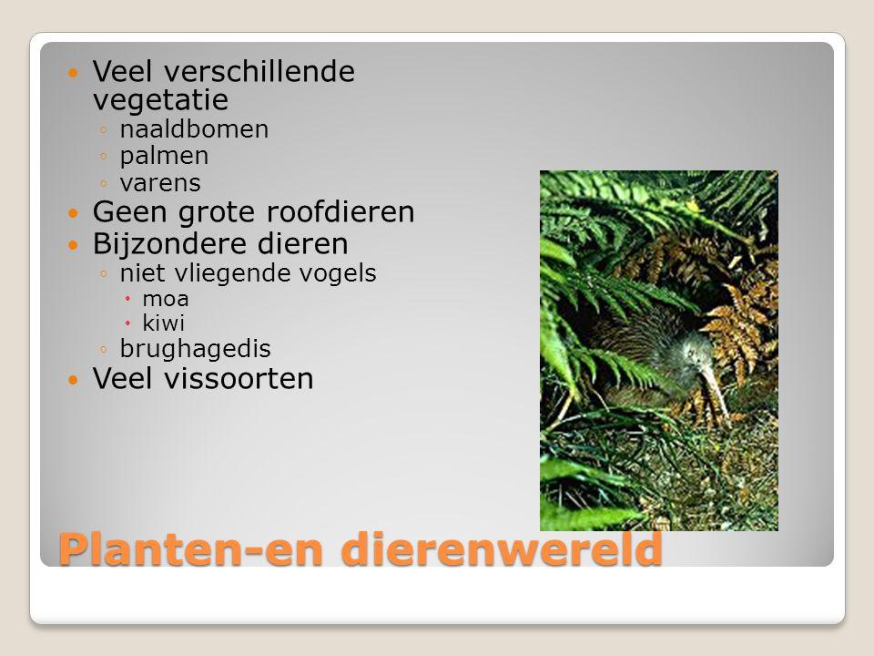 Planten-en dierenwereld Veel verschillende vegetatie ◦naaldbomen ◦palmen ◦varens Geen grote roofdieren Bijzondere dieren ◦niet vliegende vogels  moa