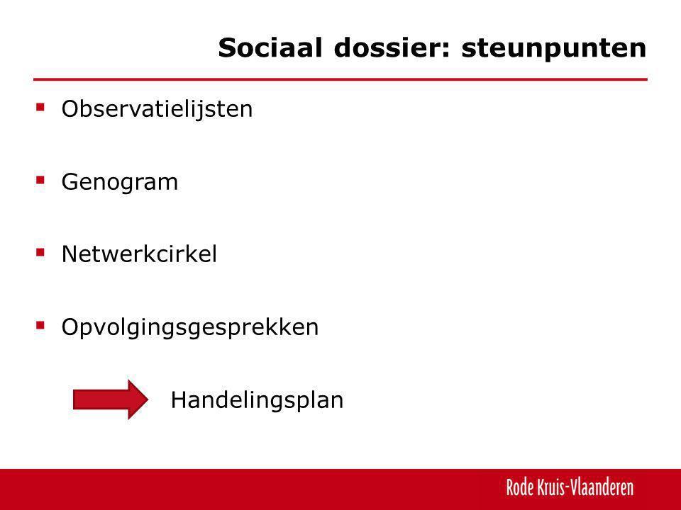 Observatielijsten  Genogram  Netwerkcirkel  Opvolgingsgesprekken Handelingsplan Sociaal dossier: steunpunten