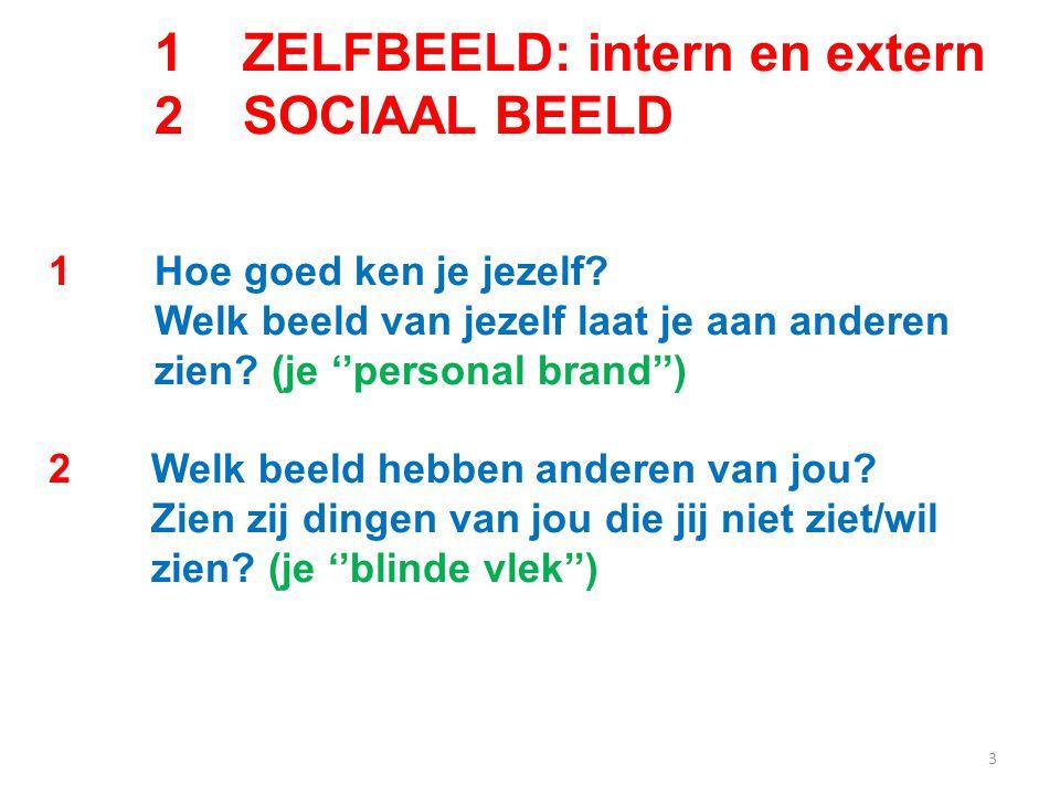 3 1 ZELFBEELD: intern en extern 2 SOCIAAL BEELD 1Hoe goed ken je jezelf.