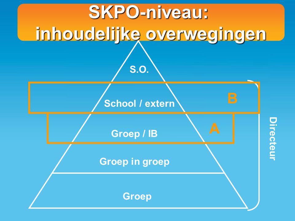 SKPO-niveau: inhoudelijke overwegingen S.O. School / extern Groep / IB Groep in groep Groep Directeur A B