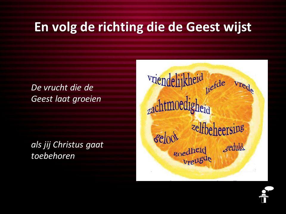 En volg de richting die de Geest wijst De vrucht die de Geest laat groeien als jij Christus gaat toebehoren