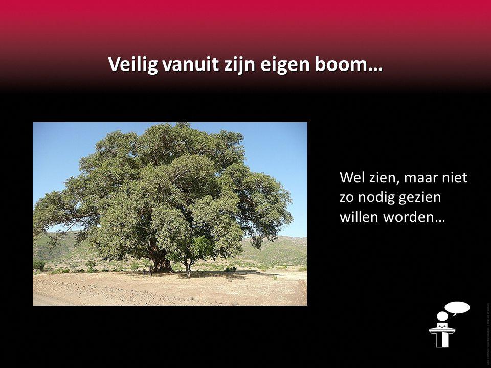 Veilig vanuit zijn eigen boom… Wel zien, maar niet zo nodig gezien willen worden…