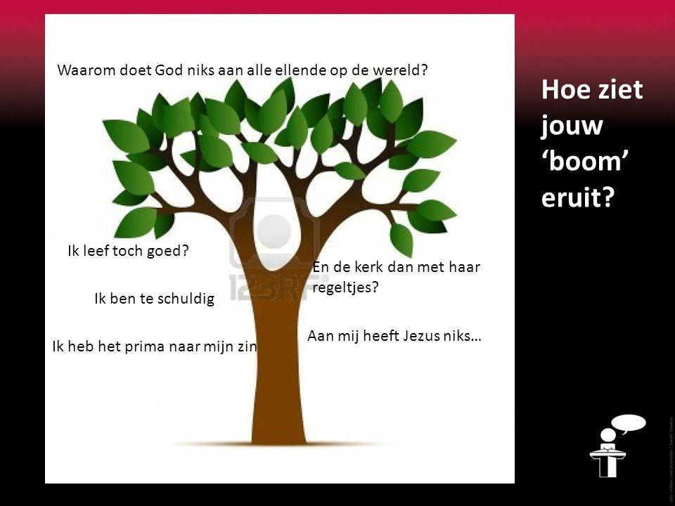 Hoe ziet jouw 'boom' eruit? Waarom doet God niks aan alle ellende op de wereld? Ik leef toch goed? En de kerk dan met haar regeltjes? Ik heb het prima